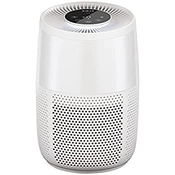 Instant Air Purifier Helps remove 99.9% of viruses  COVID-19  bacteria allergens smoke  advanced 3-in-1 HEPA-13 filtration with plasma ion technology Small Room Pearl