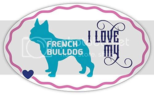 Makoroni I Love My French Bulldog, CAR Magnet-Magnetic Bumper Sticker 3x5 or 4.5x7.5 inc, DesW20