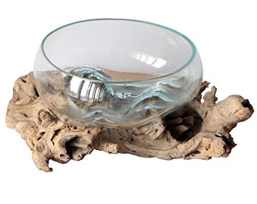 Geschenk Deko Gamal Wurzelholz B-Ware Glas Ø 20-22 cm Wurzel Holz Teakholz Vase Schale L