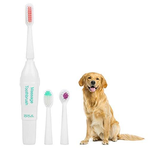 HEEPDD Hundezahnbürste Empfohlen von Tierärzten Professionelle elektrische Zahnbürste mit 2 Bürstenköpfen ohne Akku für Hund und Katze (Grün)