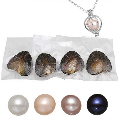 7-8MM Oysters with Pearls Inside Freshwater Cultured Pearls Single Round Oyster Pearl 4PCS with DIY Necklace,Valentines Mothers Day Birthday Wedding Party Gifts