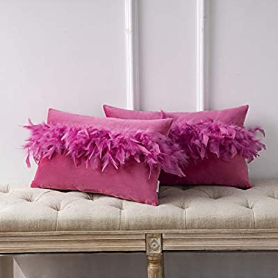 Ashler Pack of 2 Throw Pillow Cases Luxury Decorative Soft Velvet Cushion Covers with Feather for Couch Bed Living Room and Office Chair, Pink 12 x 20 inches 30 cm x 50 cm