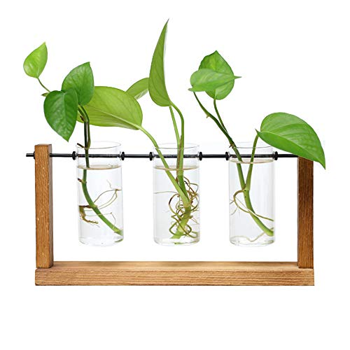 JYCRA Klarglas Hydrokultur-Vase, Desktop-Reagenzglas-Übertopf mit Retro-Ständer aus massivem Holz und drehbarem Metall-Halter für Hydrokultur-Pflanzen, Zuhause, Garten, Hochzeitsdekoration
