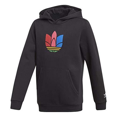 adidas Originals Unisex-Child 3D Hoodie, Black/Multicolor, M