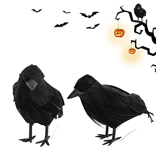 YISKY Cuervo Negra Decoración, 2 Piezas Decoración Halloween Cuervo, Fiesta De Halloween Cuervo, Cuervo de Aspecto Realista, Decoración de Halloween Prop, Fiesta Spooky Decoración para el Hogar