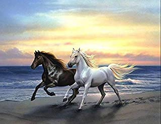 Holly LifePro DIY 5D Diamond Painting Kits for Adults, Full Drill Beach White and Black Running Horse Crystal Rhinestone E...