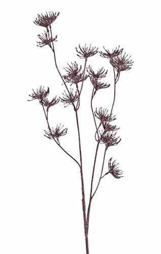 artplants.de Set 12 x Künstliche Wilde Möhre Dorian, braun, 65cm, Ø 4cm