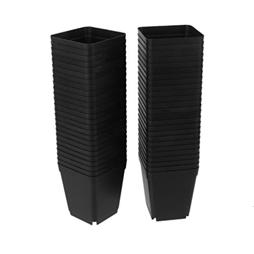 50pcs Macetas de Flores Vivero Mini 7cm * 7cm Plástico Negro