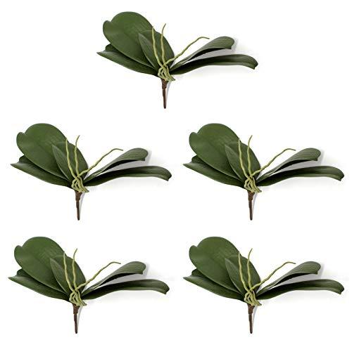 DARO DEKO Orchideen-Zweig mit 5 Blättern und Luftwurzel 5 Stück