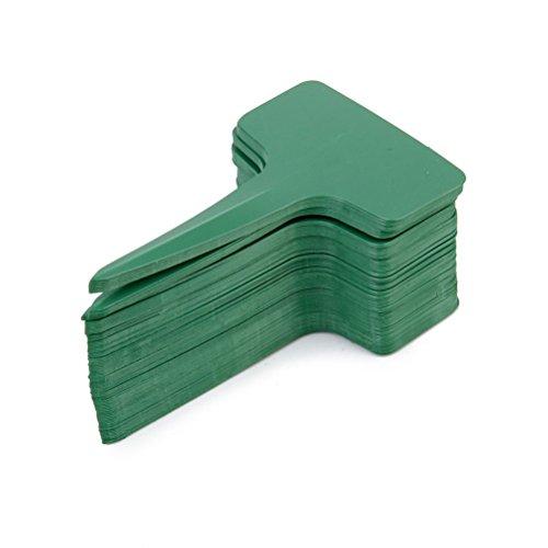 Pixnor Lot 10 * * * * * * * * 6 cm de type T étiquettes Marqueurs Étiquettes