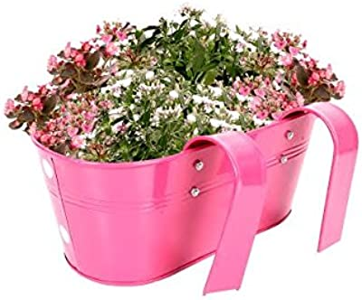 TrustBasket Set of 2 -Dotted Oval Railing Planter - (Magenta, Green)