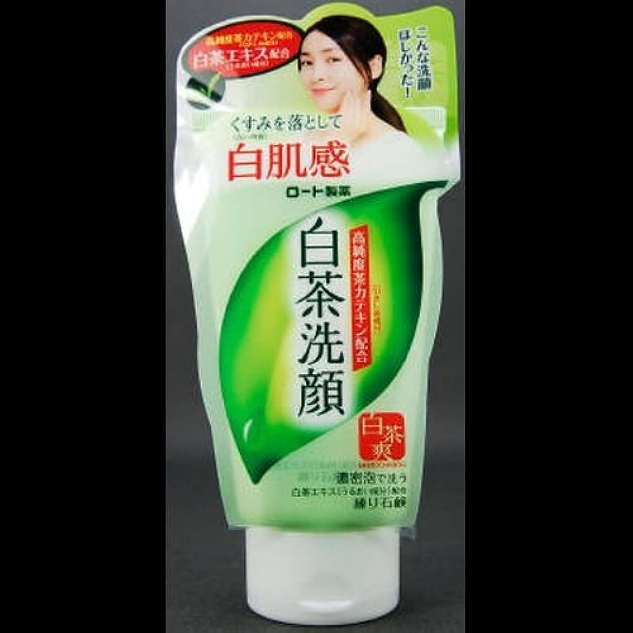 候補者信仰原告【まとめ買い】白茶爽 白茶練り石鹸 ×2セット