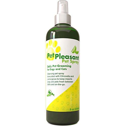 Cat Flea Sprays