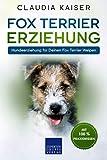 Fox Terrier Erziehung: Hundeerziehung für Deinen Fox Terrier Welpen
