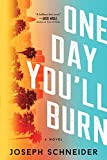 Image of One Day You'll Burn (LAPD Detective Tully Jarsdel Mysteries, 1)
