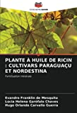 PLANTE À HUILE DE RICIN : CULTIVARS PARAGUAÇU ET NORDESTINA: Fertilisation minérale