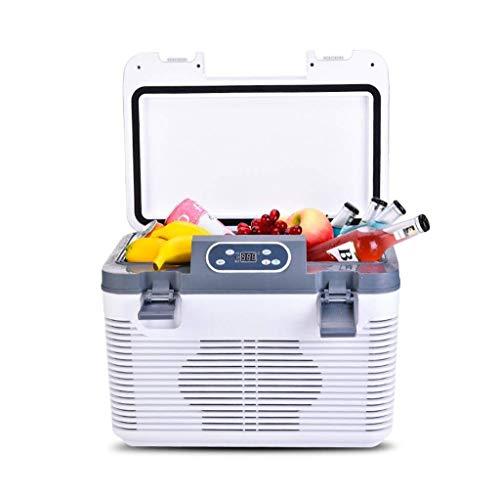 Mini Fridge Cooler 2 Modes Cooler and Warmer, Car Refrigerator 19L Portable, Travel Camping Freezer with Drug Vaccine Refrigerator for Car and Home,24V/220V (Size : 12V/220V)