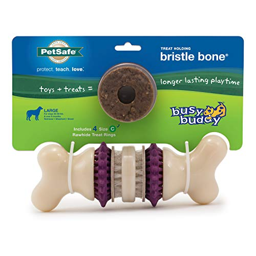 PetSafe Busy Buddy Bristle Bone Chew Toy for Dogs – Strong Chewers – Helps Clean Teeth –Purple, Large
