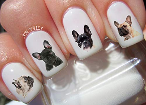French Bulldog Water Nail Art Transfers Stickers Decals - Set of 54