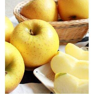 青森 りんご 家庭用 訳アリ 【葉とらずりんご シナノゴールド5kg ファーム】 (13-23玉) 冷蔵便