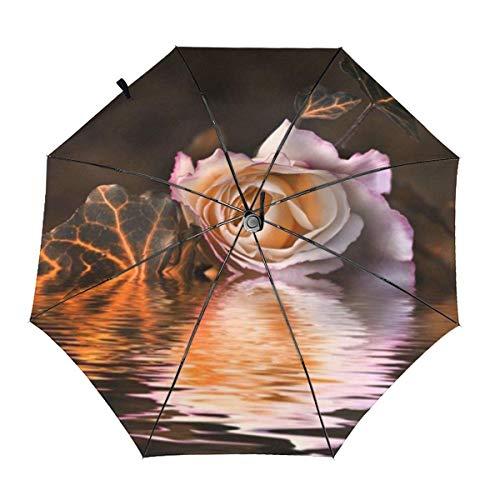 Paraguas Plegable Compacto a Prueba de Viento de una Mano con Apertura y Cierre automático Rosa Rosa marchita y Nubes Lluvia y Paraguas de Viaje irrompibles al Aire Libre
