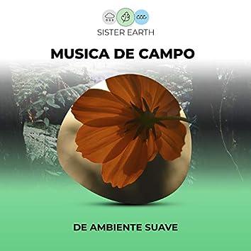 Musica de Campo de Ambiente Suave