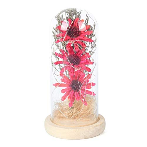 Gedroogde zonnebloem LED-lichtsnoer in glazen koepel op houten voet Romantisch cadeau voor vrouwen Valentijnsdag Bruiloft decor, Rozerood, Verenigd Koninkrijk