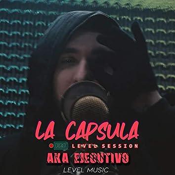 Level Session 10 No Los Vi (feat. Aka Ejecutivo)