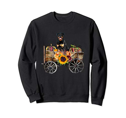 Rottweiler Clothing - Rottweiler Dog in Country Wagon Sweatshirt