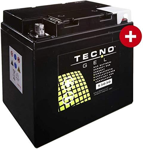 53030 TECNO GEL-Batterie für R 100 R Roadster Classic Baujahr 1994-1996