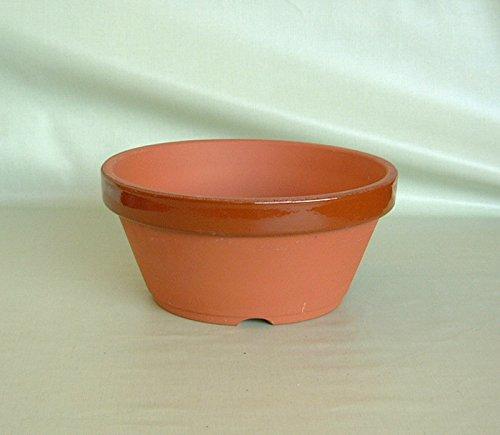 駄温鉢〈駄鉢〉 浅型 (10号) 素焼き鉢 陶器鉢 テラコッタ *国産植木鉢* 常滑 盆栽 山野草