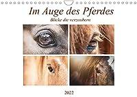 Im Auge des Pferdes (Wandkalender 2022 DIN A4 quer): Augenblicke des Pferdes (Monatskalender, 14 Seiten )
