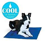 """K&H Pet Products Coolin' Pet Pad Large Blue 20"""" x 36"""""""