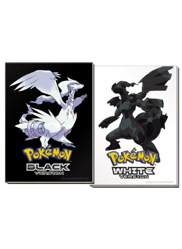 Pokemon Black & Pokemon White Versions: The Official Pokemon Strategy Guide & Unova Pokedex