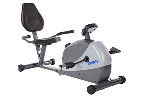 Stamina 4831 Magnetic Recumbent Exercise Bike, Silver