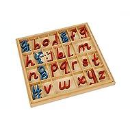 Montessori Materials Language Small D Nealian Wooden Moveable Alphabet with Box
