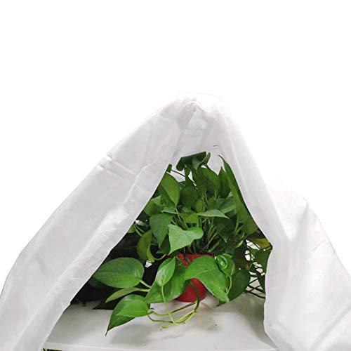 Cubierta de protección contra heladas para plantas de invierno, reutilizables, anticongelantes, para arbustos y árboles, evita que tus plantas se dañen (blanco)-2,5 m x 7,5 m