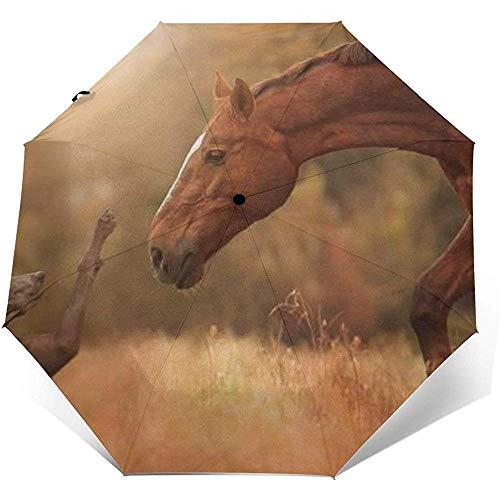 Pferd trifft Hund Folding Compact Regenschirm wasserdicht-Sun Block-Auto Open&Close (schwarzer Kleber)