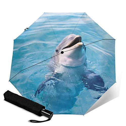 Dolphin, Premium-Regenschirm winddicht – kompakter Regenschirm automatisch – Reise-Regenschirm faltbar – tragbarer Regenschirm Auto – Reise-Regenschirm für Herren