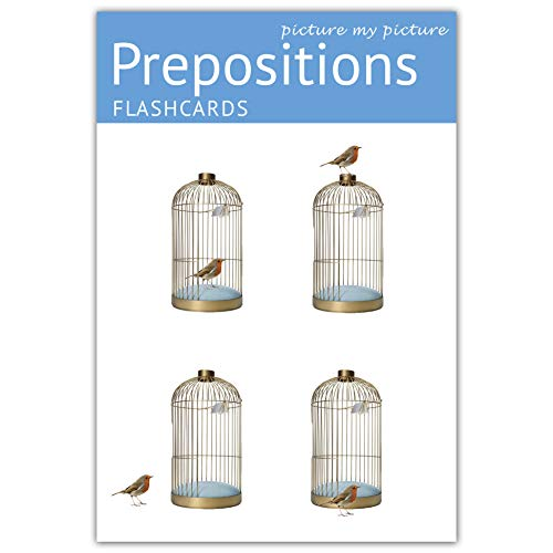 Picture My Picture Prepositions Flash Cards | 40 Positional Language Development Educational Photo Cards | 5 Learning Games | Speech Therapy Materials, ESL Materials