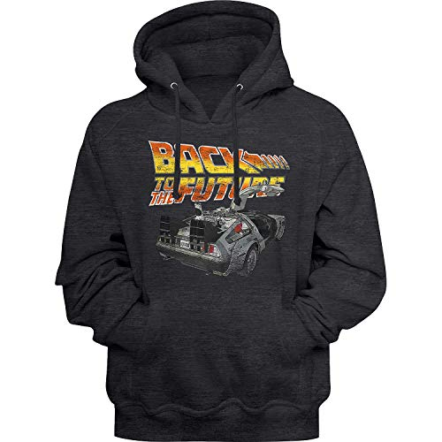 * Best Value * Delorean Back to The Future Logo Hoodie, Men, Women, S to 5XL