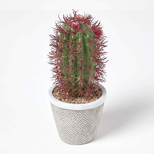 Homescapes Künstlicher Kaktus im Keramik Topf, kleine künstliche sukkulente Pflanze – Denmoza Kaktus ca. 25 cm hoch, tolle Dekoration für Kaffeetisch, Schreibtisch oder Fensterbank