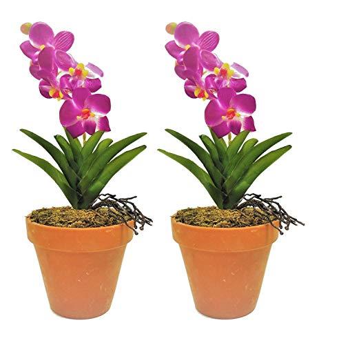 Fuchs seit 1895 2er Set künstliche Orchidee im Tontopf 31 cm Lila