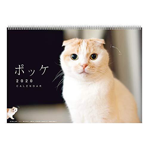 アートプリントジャパン 2020年 ポッケ カレンダー vol.029 1000109238