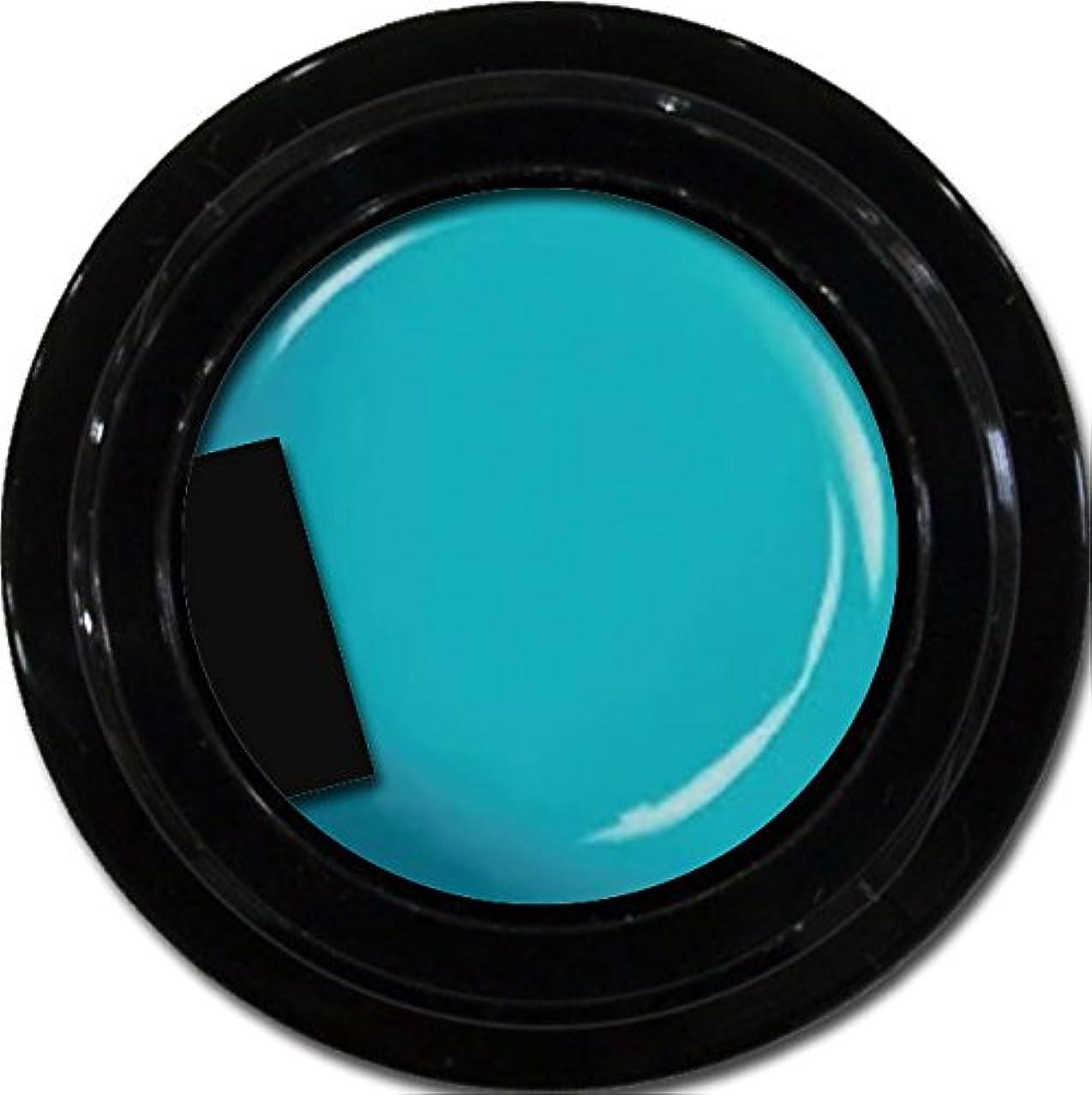 加速度離れた統治するカラージェル enchant color gel M707 CanalBlue3g/ マットカラージェル M707カナールブルー 3グラム