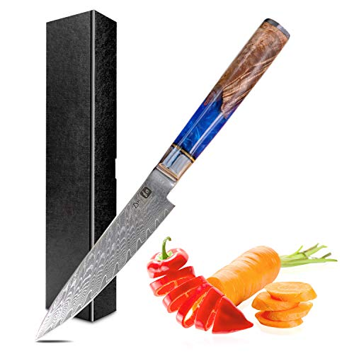 Dnifo Kitchen Utility Knife 5 Inch, Damascus Steel Japanese Kitchen Knives -Super Sharp Ultimate All-Purpose Japanese Knife for Slicing, Mincing, Chopping - Non-stick Blade and Anti-rusting Forged