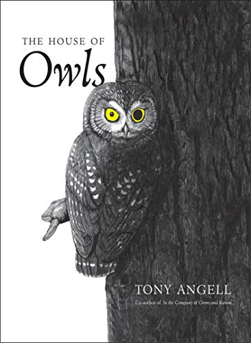 The House Of Owls Angell Tony Amazon Com