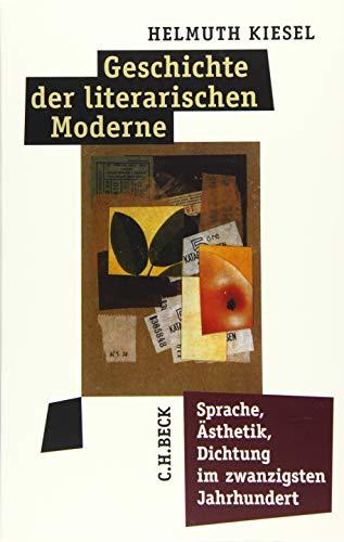 Geschichte der literarischen Moderne: Sprache, Ästhetik, Dichtung im zwanzigsten Jahrhundert