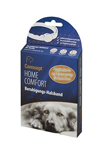 Canosept Home Comfort Beruhigungshalsband - Hundehalsband mit Baldrian & Lavendel fördert Wohlbefinden & Entspannung bei Hunden