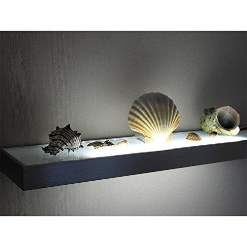 LED Glasbodenleuchte MEMPHIS in Edelstahloptik 450 mm mit Schalter